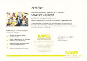 Zertifikat-MAS-Kraftmonibus