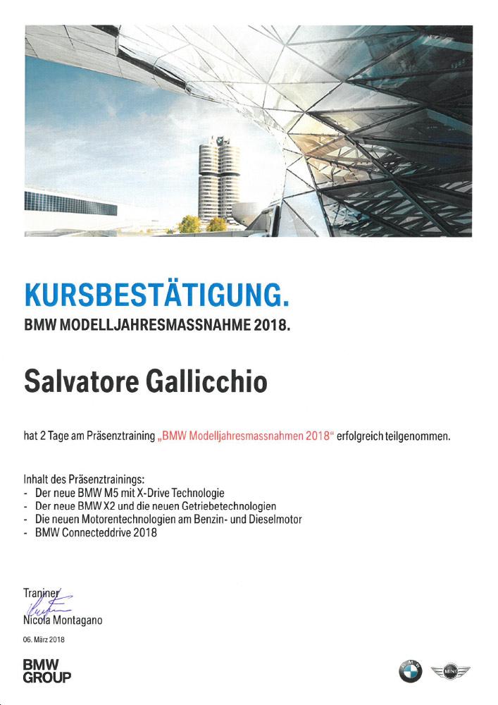 https://www.gutachter-kfz.ch/wp-content/uploads/2018/03/BMW-Dielsdorf-Kursbestätigung-06.03-07.03.2018.pdf